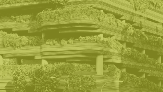 Green Infrastructure in Urban Centres: Policy, Design and Practice representative image.